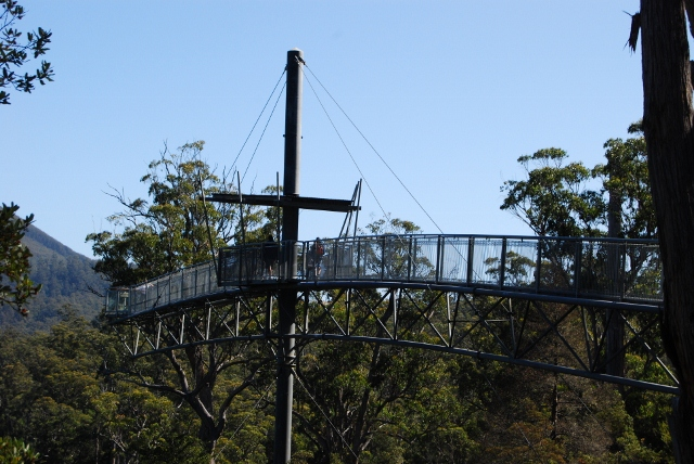 Tahune skywalk